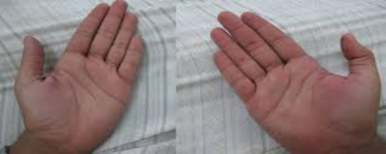 الاســـم:يد2.JPG المشاهدات: 745 الحجـــم:20.4 كيلوبايت